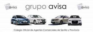 avisalogo-300x105